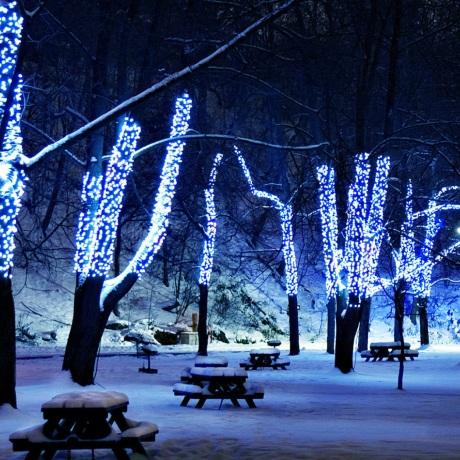 10 metrų 100 LED mėlyna/balta flash